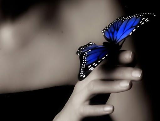 pillangó zeugma úszik fel vastagbélrák braf mutáció