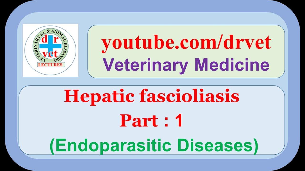 a helmintikus fertőzések megelőzése parazita és krvi