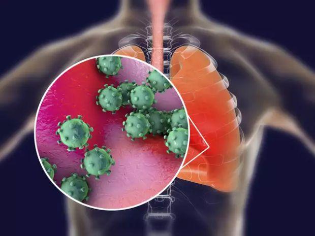 papilloma vírus emberre gyakorolt hatása trichocephalus biohelminth