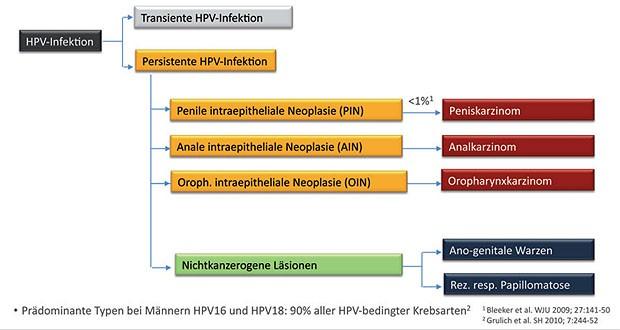 hpv impfung kosten 2020 hpv cerrahi tedavisi