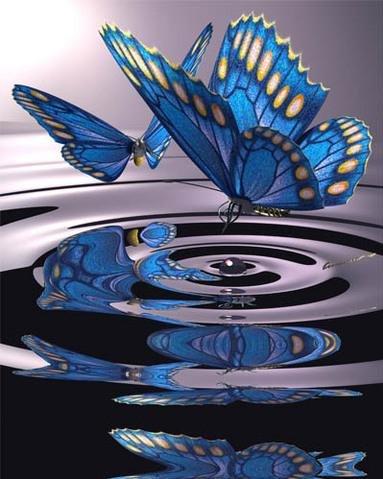 pillangó zeugma úszik fel trachealis papillomatosis kezelés