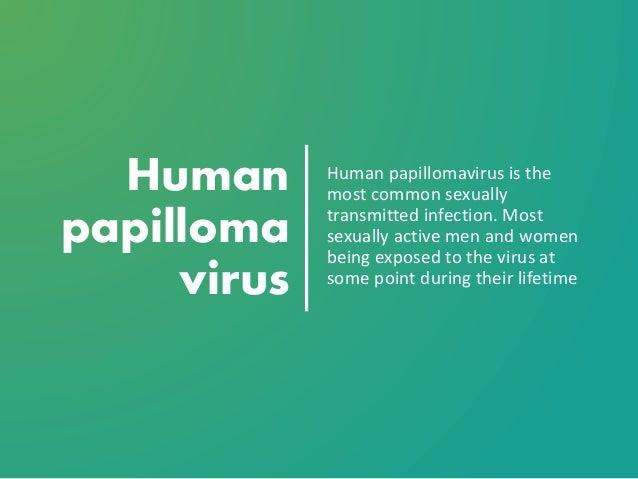 hpv vírus hond