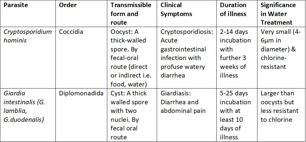 gége papillomatosis kezelésére vonatkozó irányelvek sárgarépa féreg