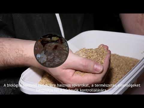 helminták parazitaellenes szer)