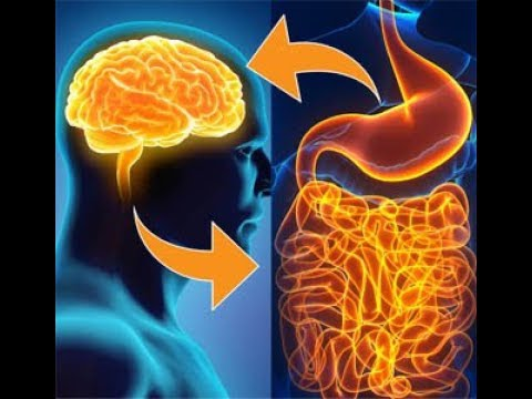 paraziták az emberi test kezelésében és megelőzésében ureaplasma és szemölcsök