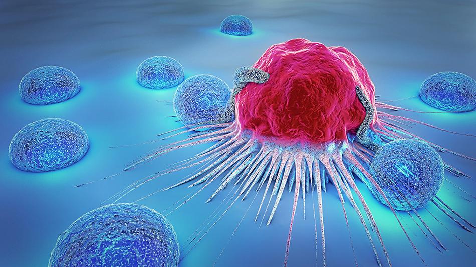 rák veszi áttekinti a nemi szemölcsök kezelését