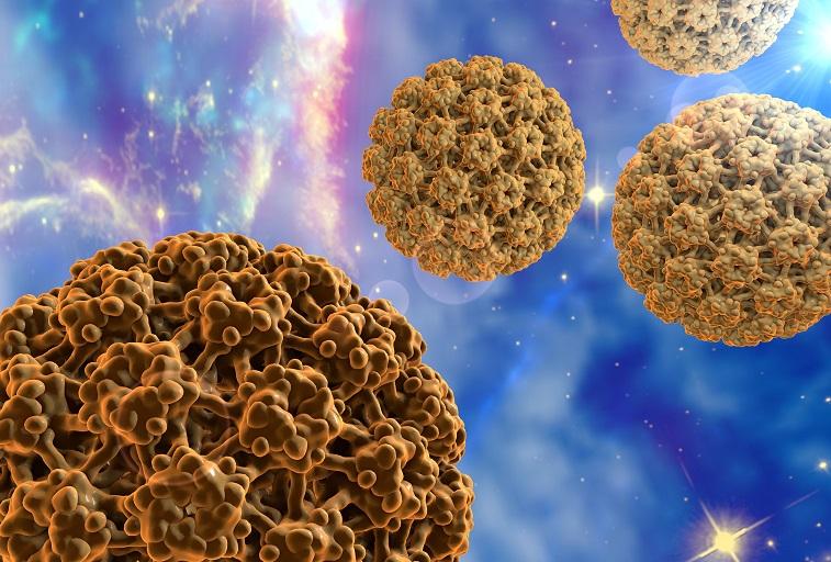 humán papillomavírus kezelese tea a bélparaziták számára