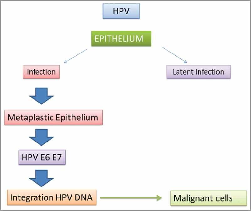 fülférgek hogyan kell kezelni HPV víruskezelés